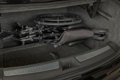 TRUNK-w-wheelchair-1109-hi9c